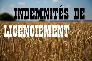calcul indemnité licenciement; indemnité licenciement